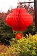 Nylon Red Lanterns